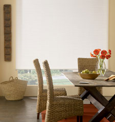 "3/8"" Double Cell Cellular Shade: Daybreak II shown in True White"