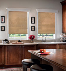 Bali Arbor roller shade shown in color Umber